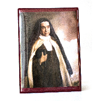 018K Slika svetice na koži